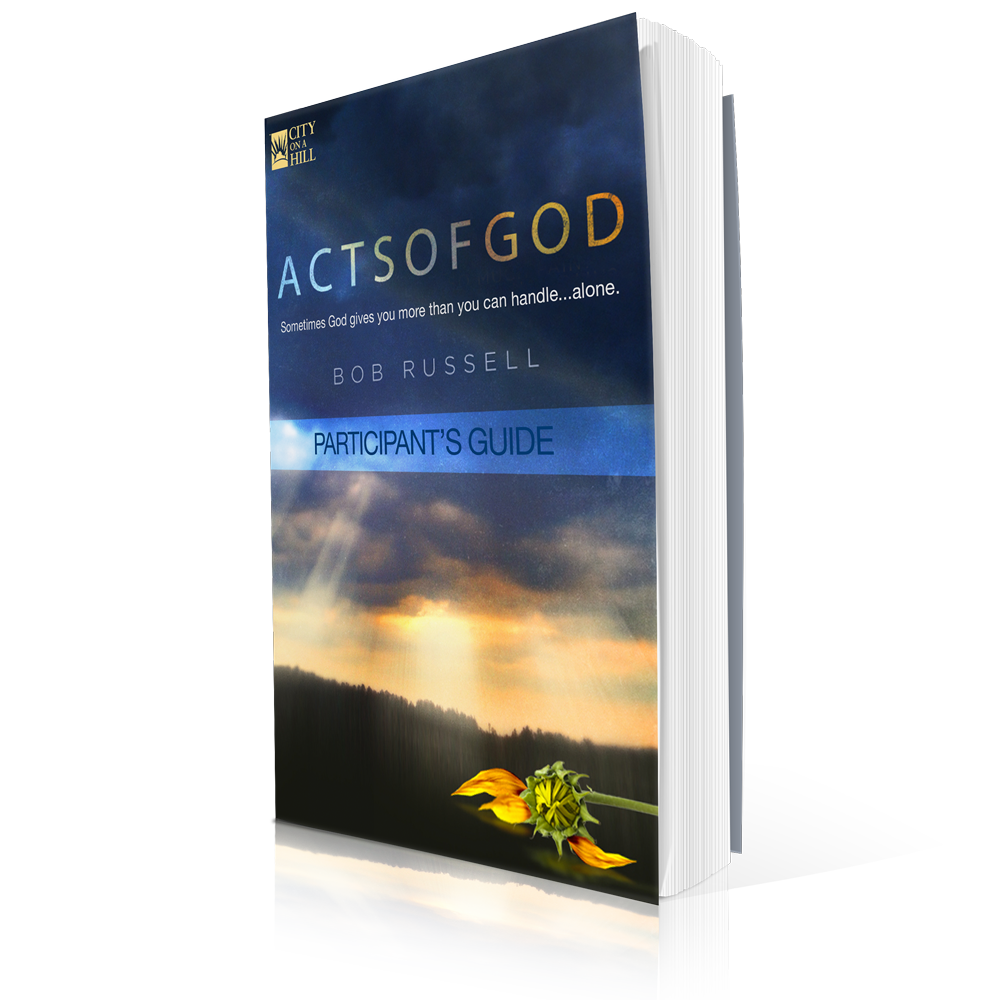 actsofgod_partsguide_mock1000.png
