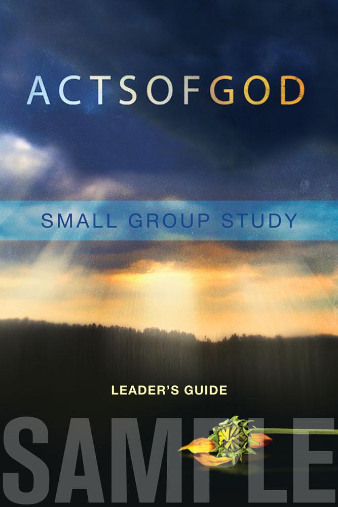 AOG-leadersguide-sample.jpg