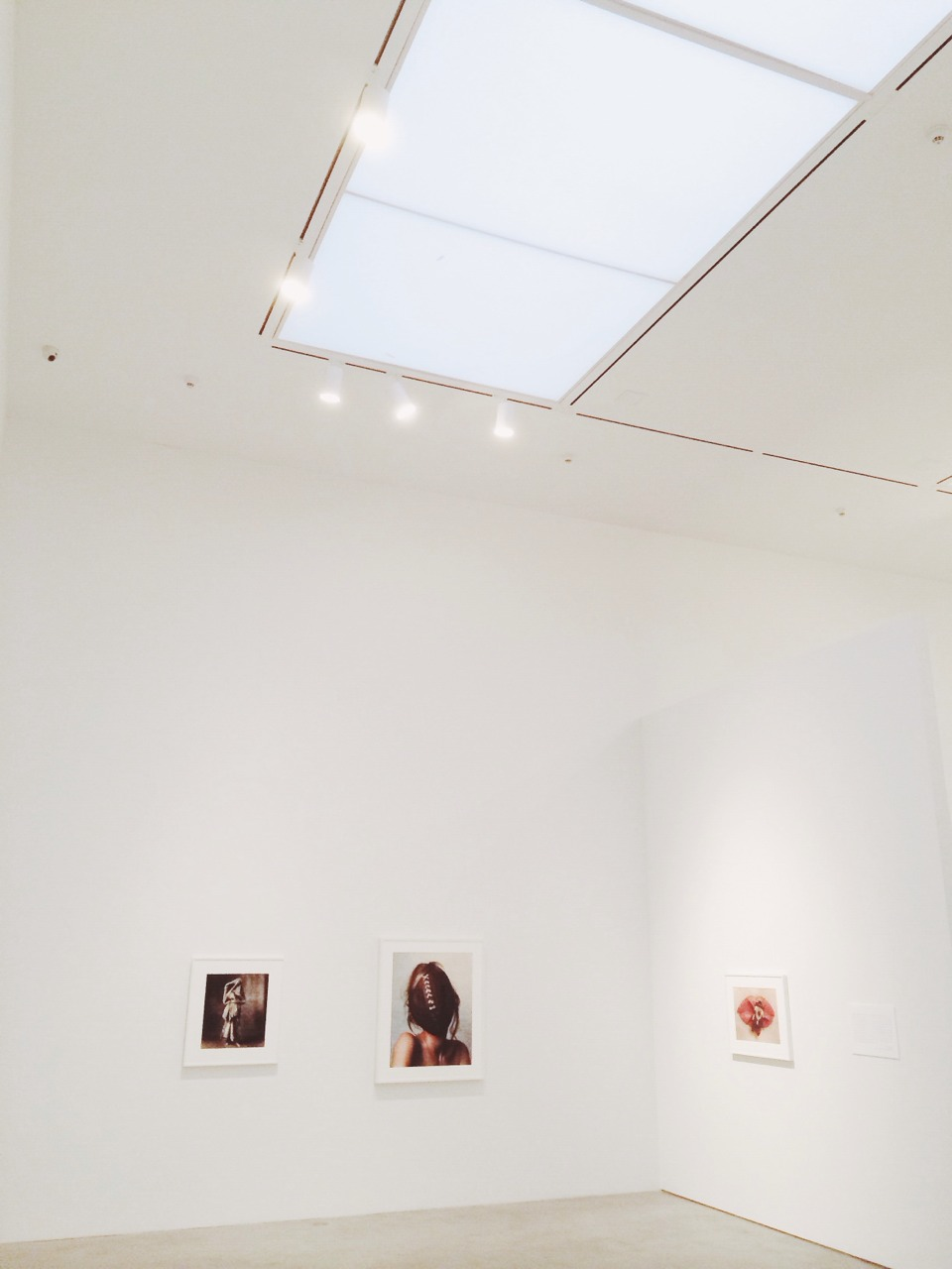 Irving Penn, The Pace Gallery New York City
