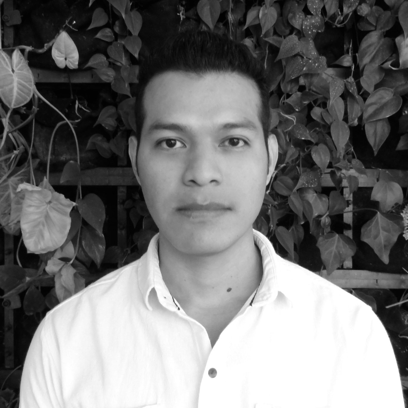 Gerson López  Dibujante