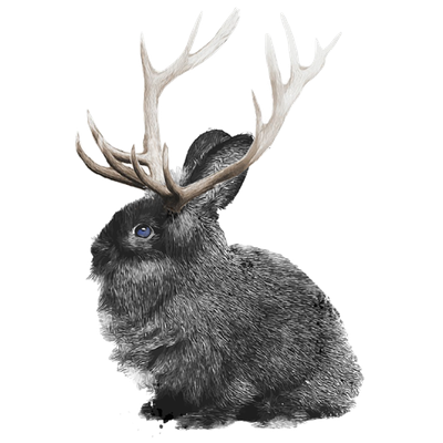bunny elk png 600px.png