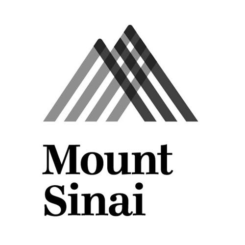 masterwork-plaques-bronze-metal-brooklyn-mount-sinai-hospital-logo.jpg