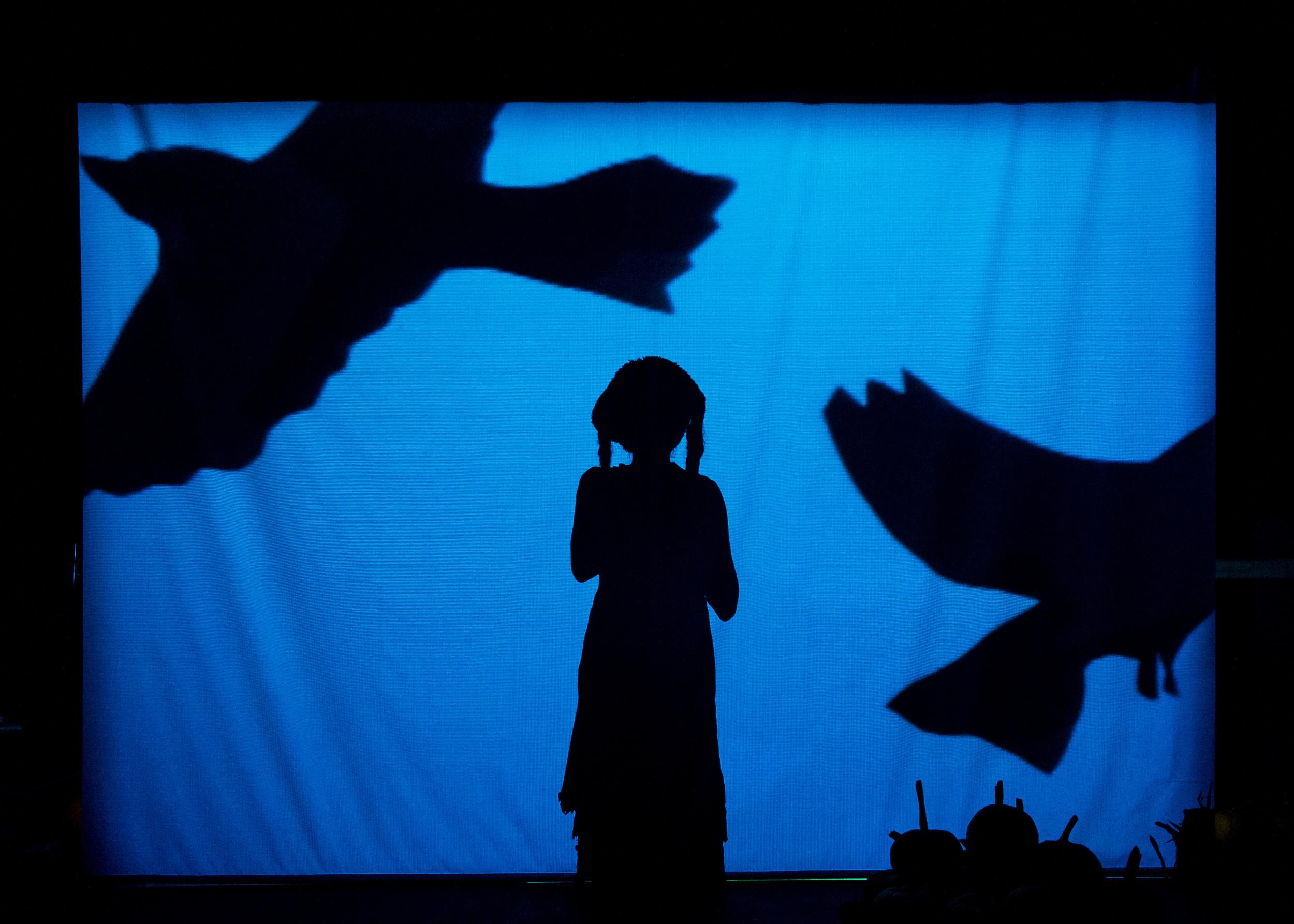 13_BigDanceTheater_PhotobyIanDouglas.jpg
