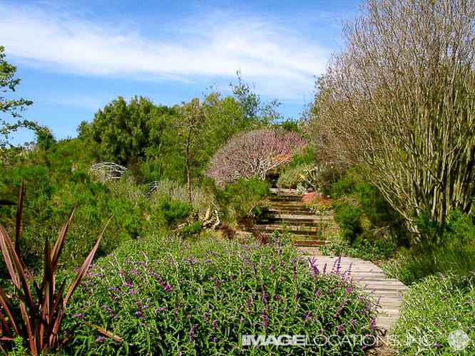 Garden-06f_121_2.jpg