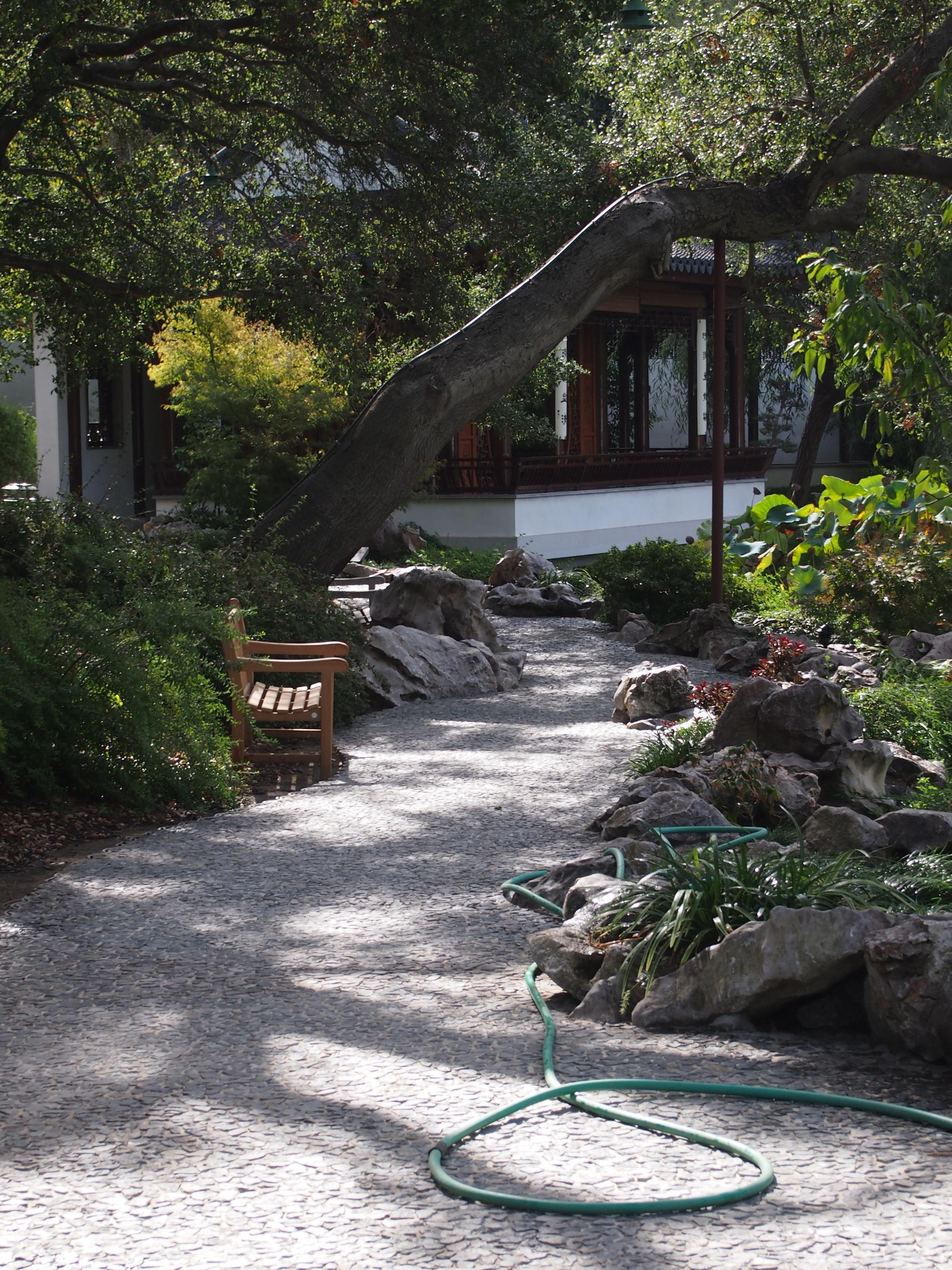 Chinese Garden17.JPG