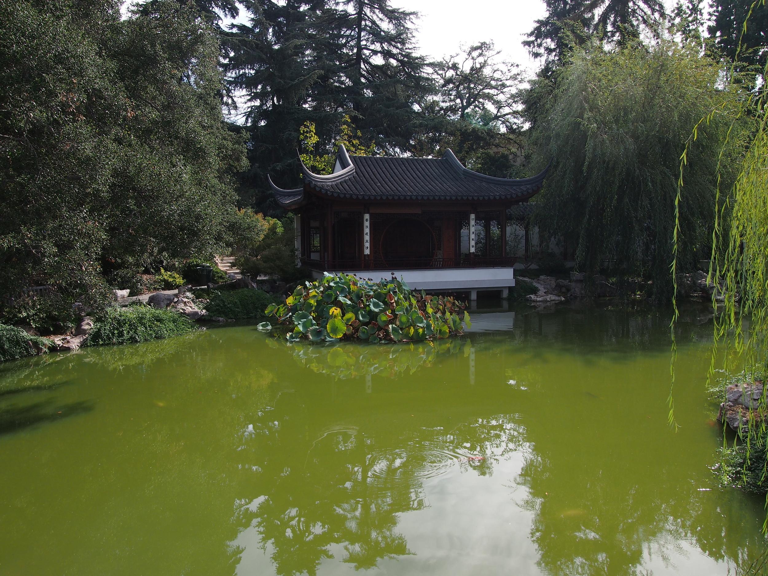 Chinese Garden25.JPG