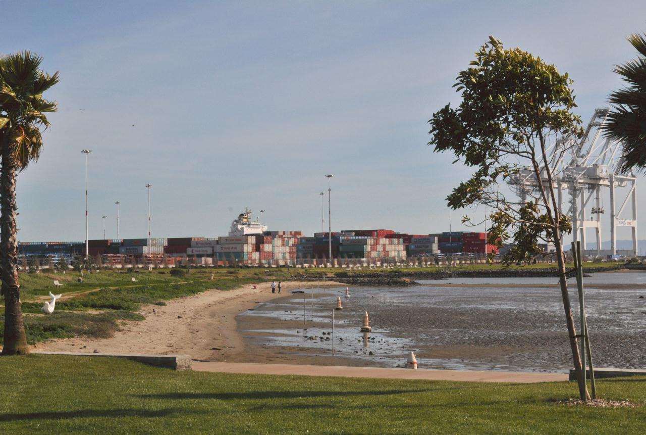 Middel_Harbor_Shoreline_Park_20100314_151436_3430BCX.jpg