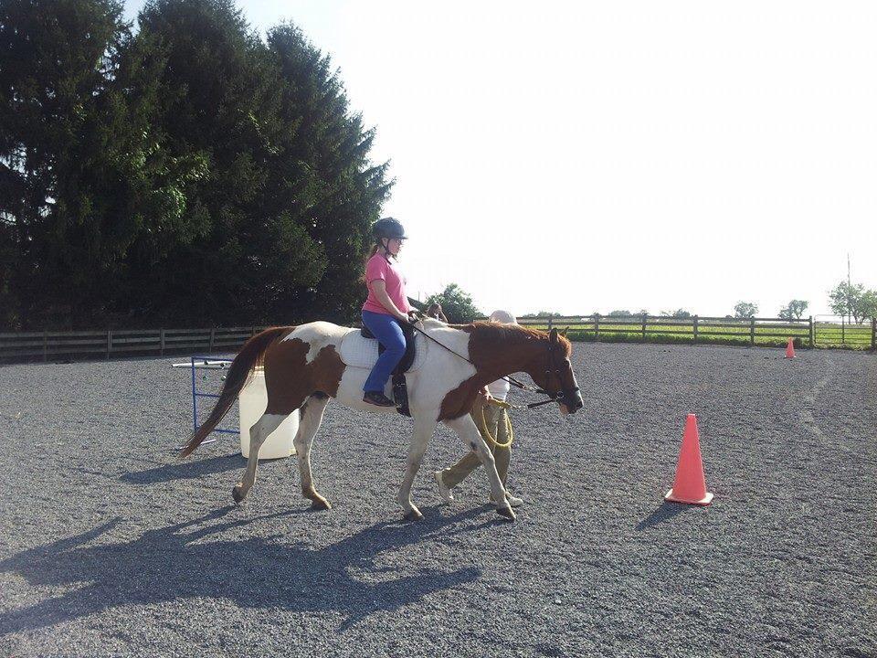 horsewithrecipient.jpg