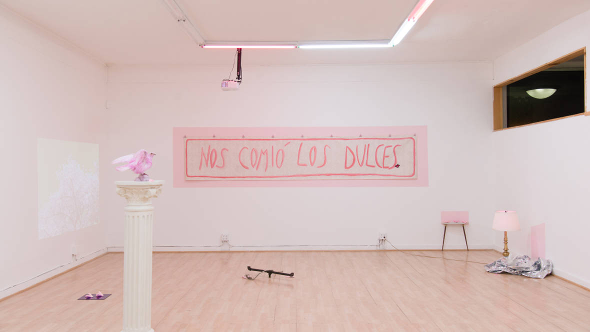 Installation view of Sofía Córdova's 'The Gentle Voice That Talks To You Won't Talk Forever.' ( Courtesy the artist and City Lights Gallery; Photo by Graham Holoch )