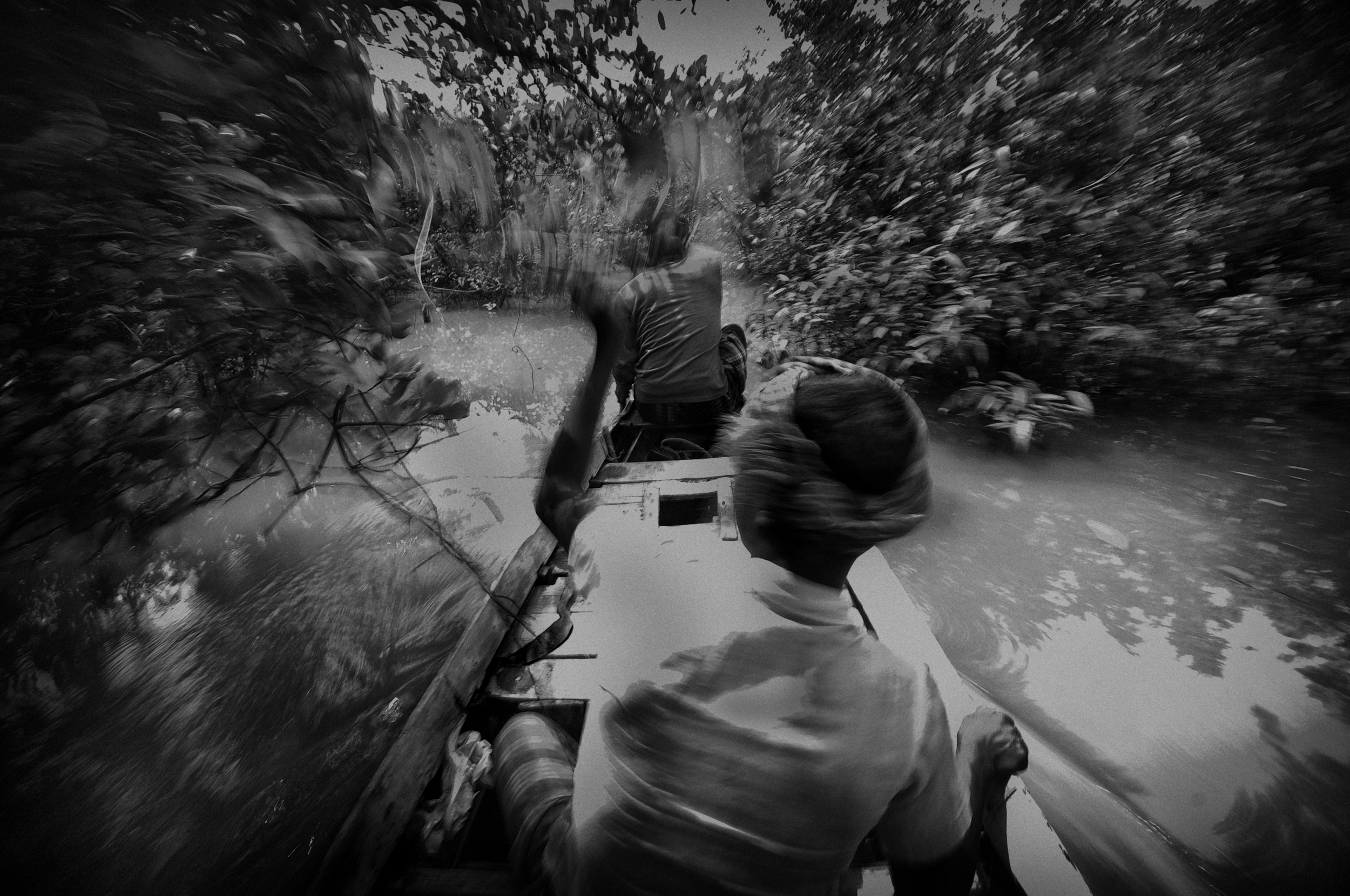 A group of honey hunters entering to the Sundarbans forest to collect honey. They have to travel through the long rivers. Quite often they get killed by the tigers or kidnapped by the pirates for ransoms.