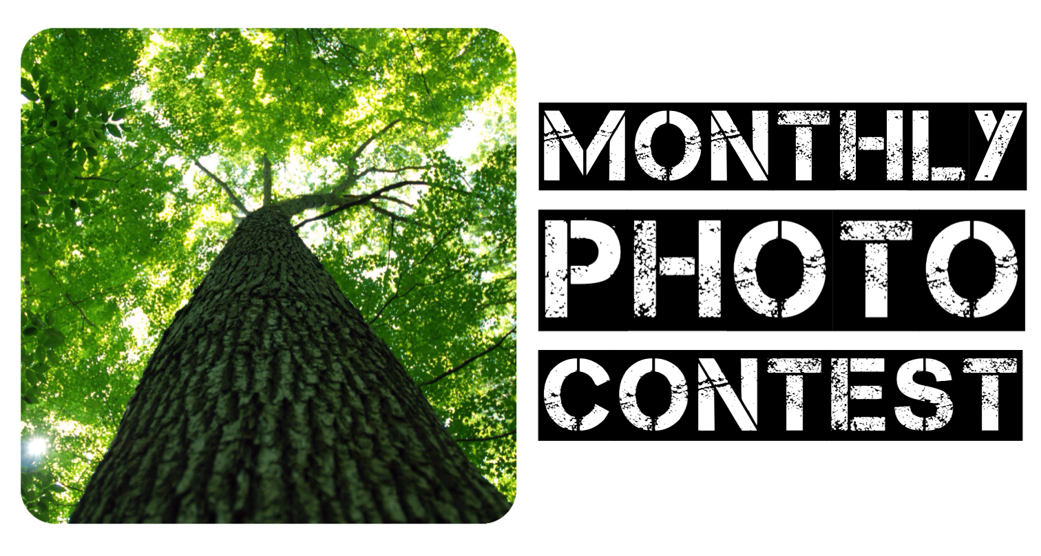 The GO Photo Contest is a monthly contest that is Free to join and fun to be a part of. this contest is all about challenging yourself to step outside of your norm and get outdoors to find new and interesting thing. check out this months theme and get all of the details here!
