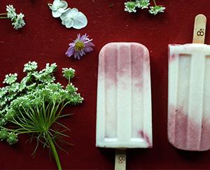 草莓優格  Strawberry Yogurt