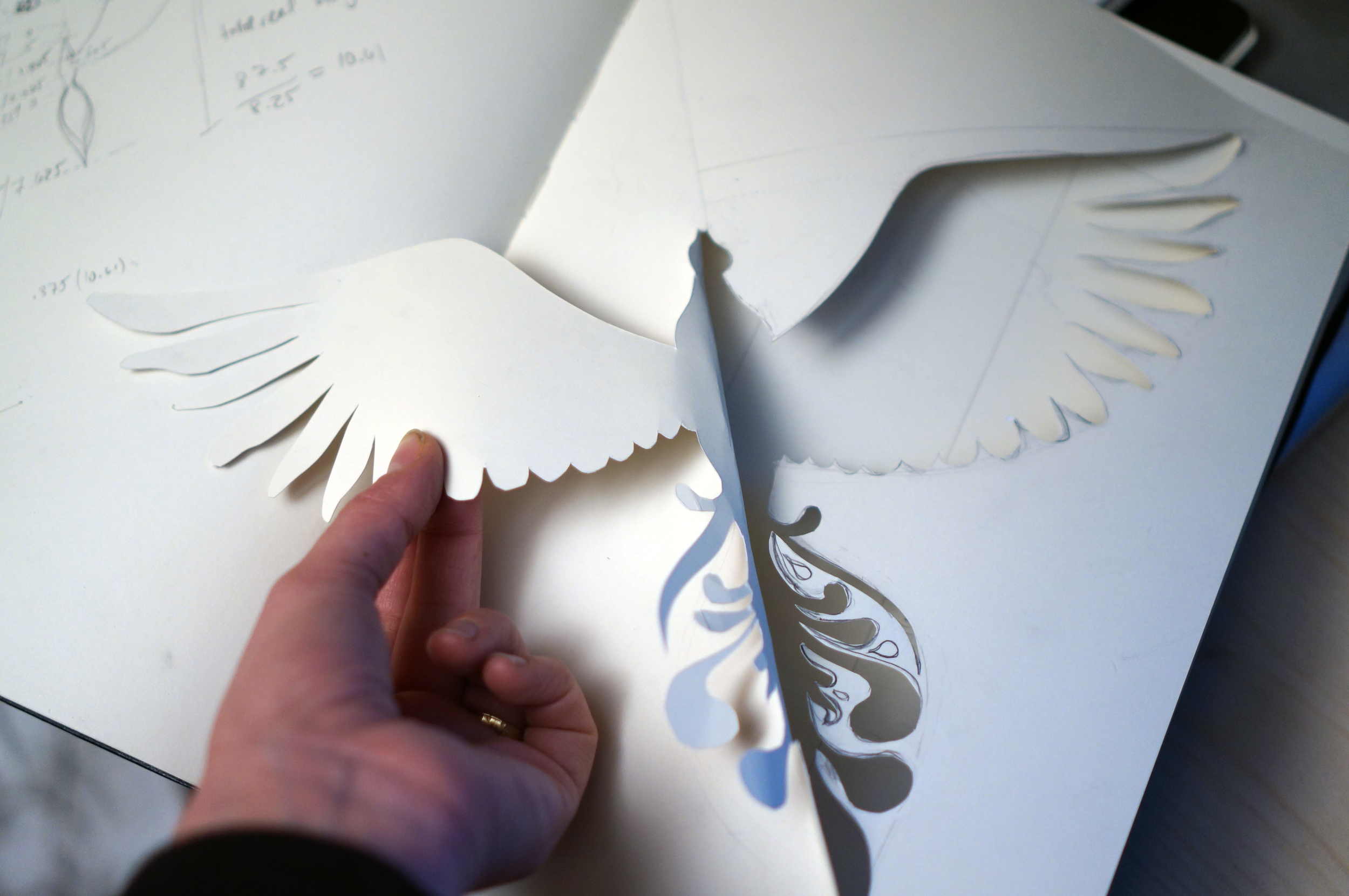 "Let's try out the symmetrical bird peel-back effect. It works, ""on paper"""
