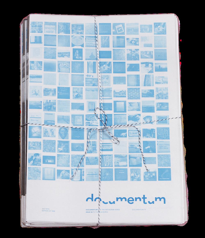 Documentum   Volume 1 Subscription $80.00