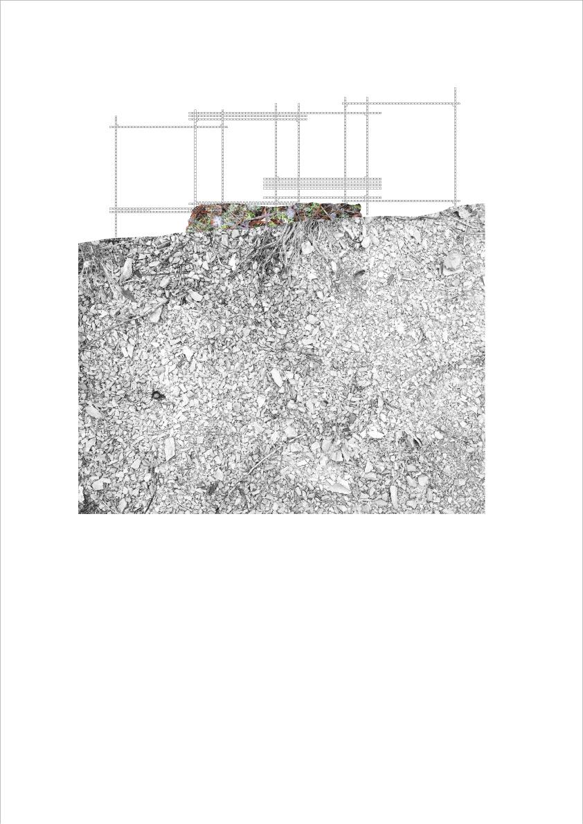 AIXOPLUC2_SECCIO.jpg