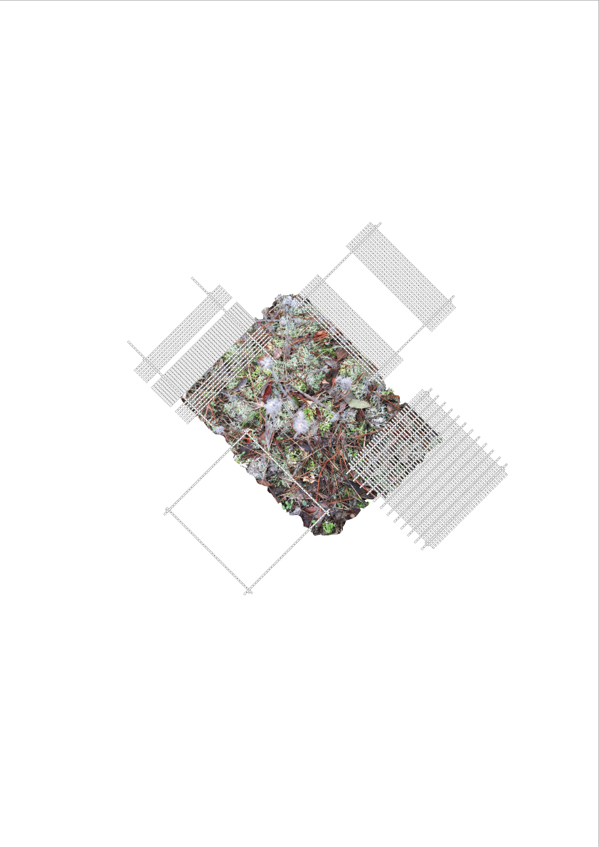 AIXOPLUC2_PLANTA.jpg