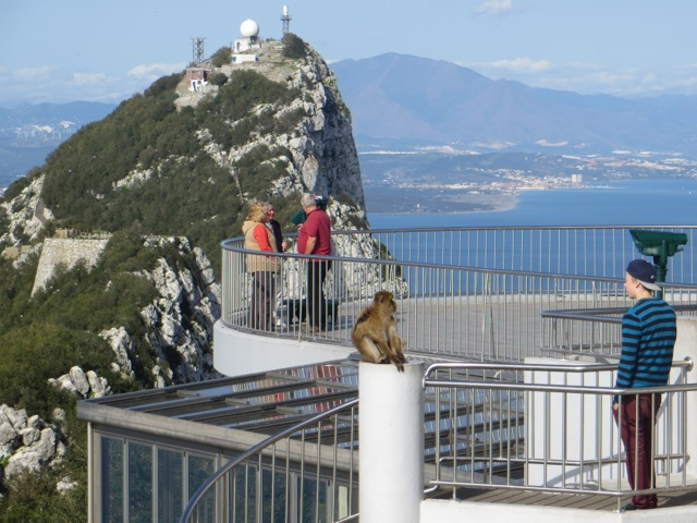 Watch out for Monkey's on Gibraltar!