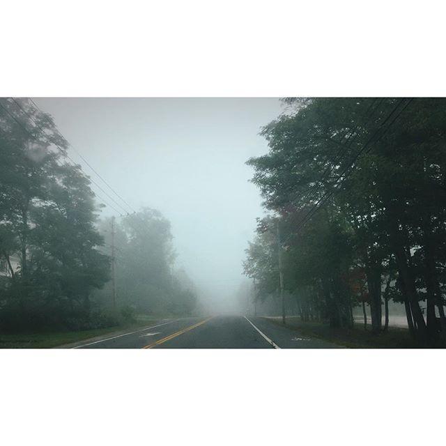 Foggy morning drives