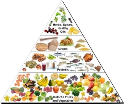 food tri.jpg