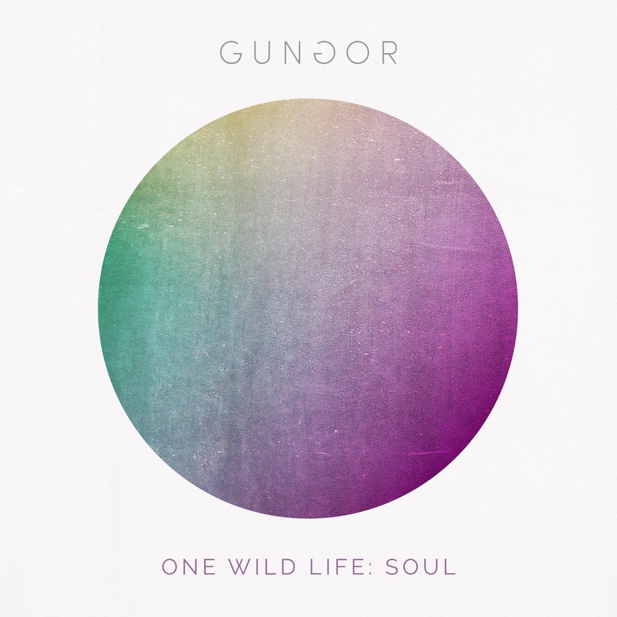 Gungor - One Wild Life: Soul
