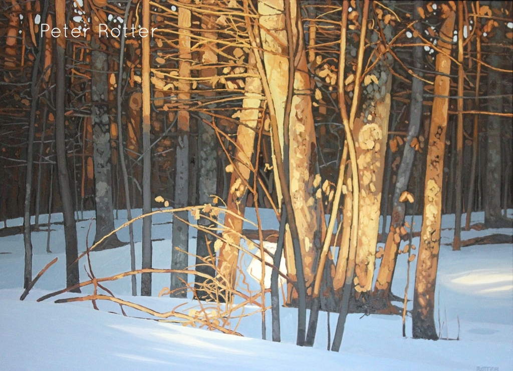 "*SOLD* Peter Rotter, Winter Light, Oil on Canvas, 30"" x 40"""