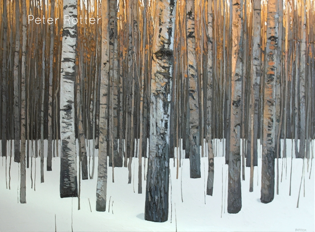 "Peter Rotter, Silver Birch, Oil on Canvas, 36"" x48"""