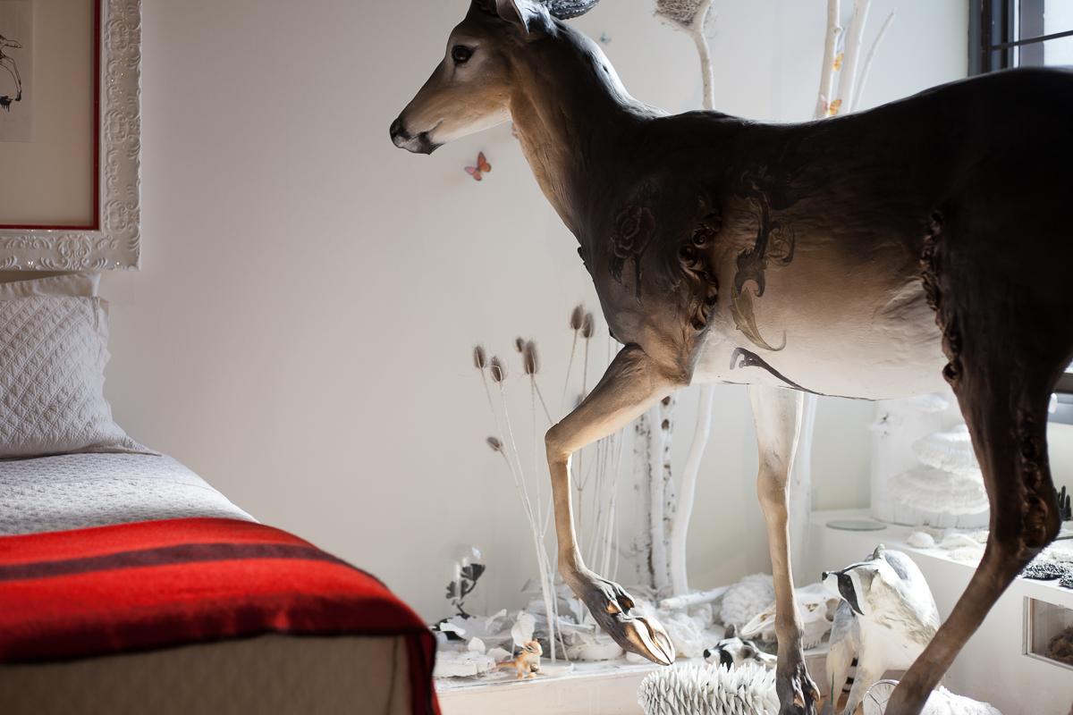 """La Forêt des Folies""  installation view - photo credit: Kristina Corre"