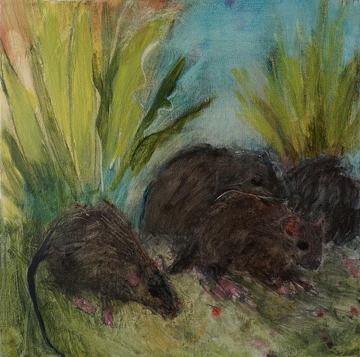 Rats II  Oil on panel 10 x 10 in. $275