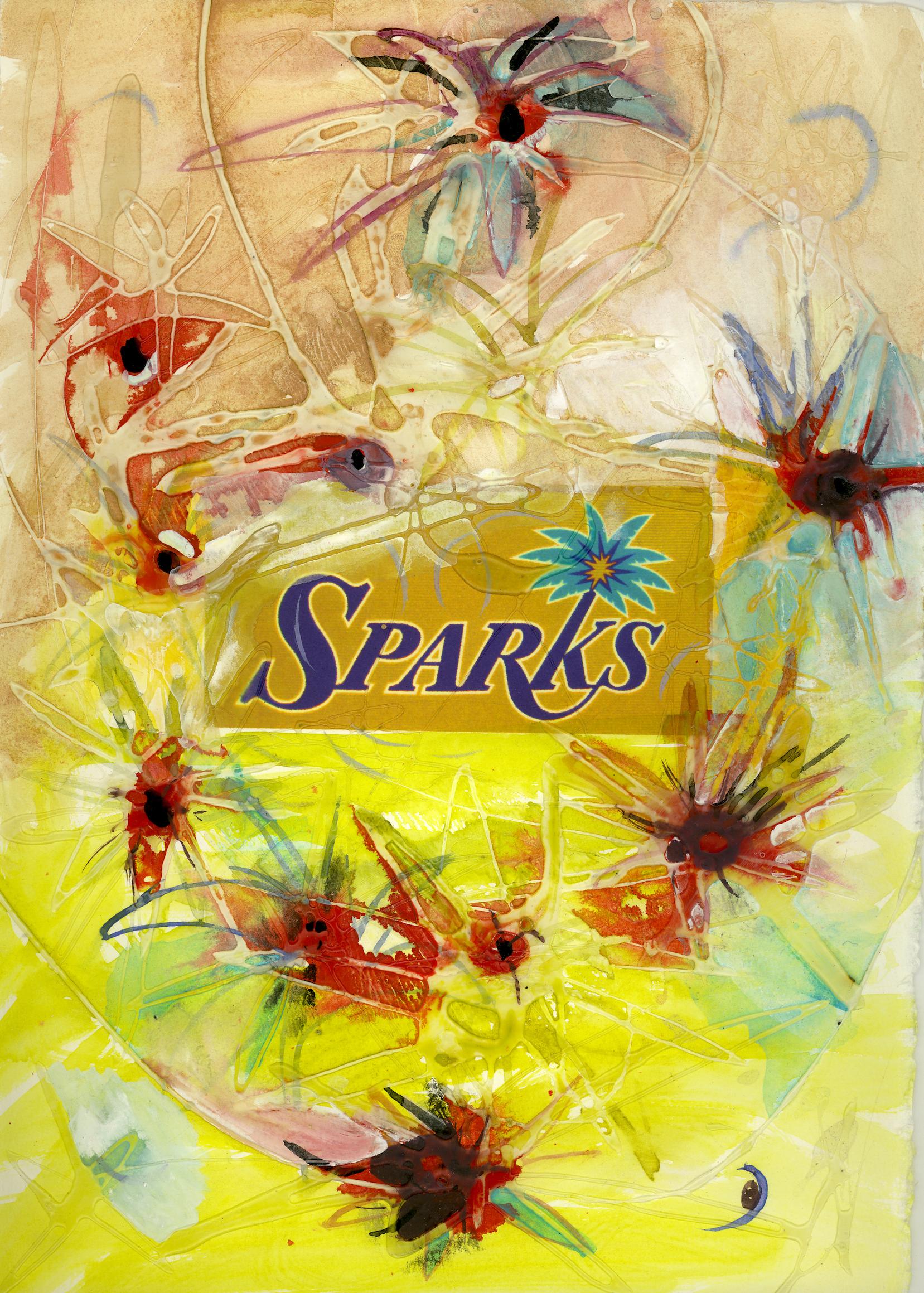 SM04 Team Play Her Sparks.jpg