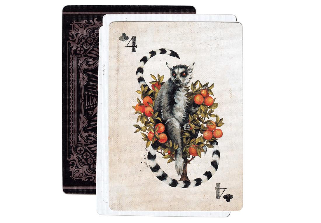 CARDS_lemurcard.jpg