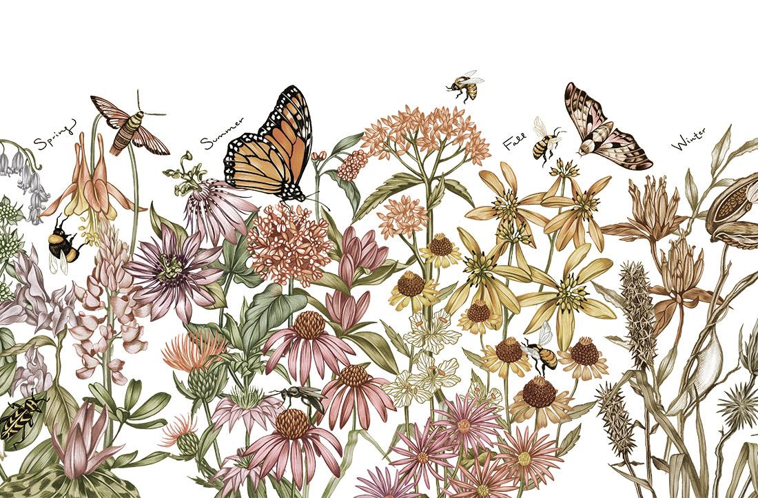 NC_pollinate_1.jpg