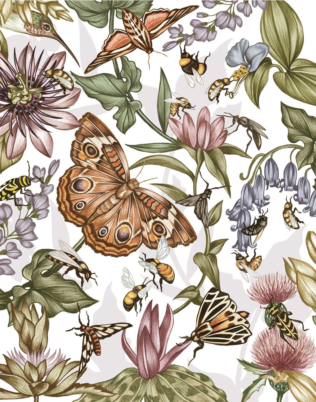 NC_pollinate_3.jpg