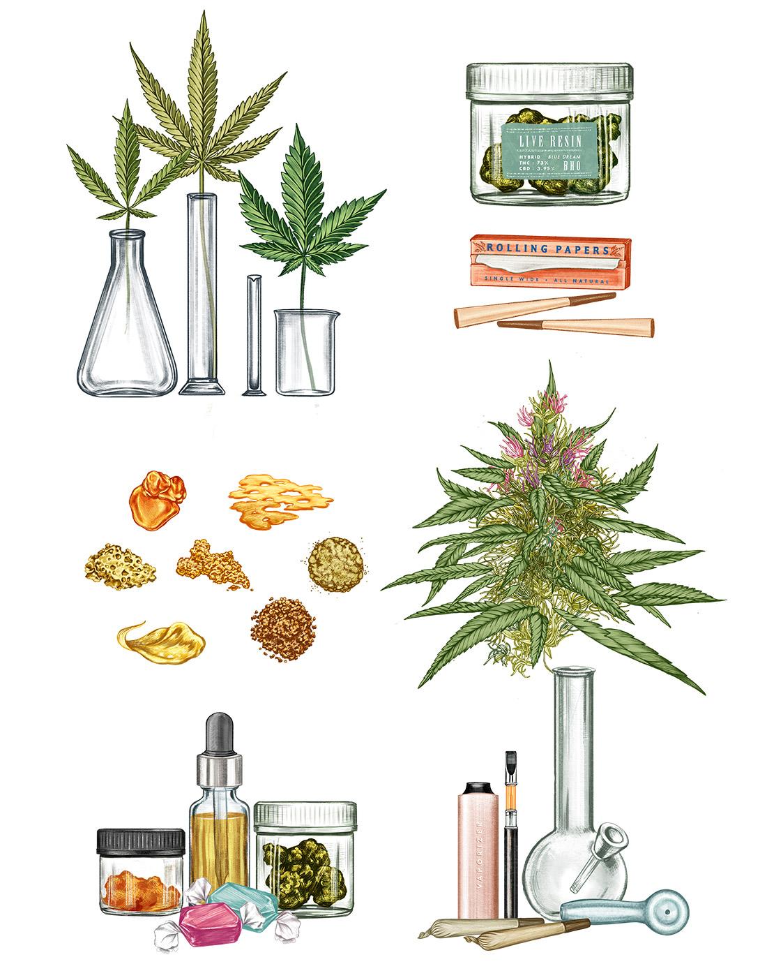 WK_Cannabis_2.jpg