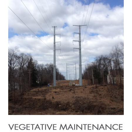 Vegetative_Maintenance.jpg