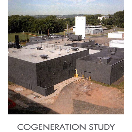 Cogeneration_Study.jpg