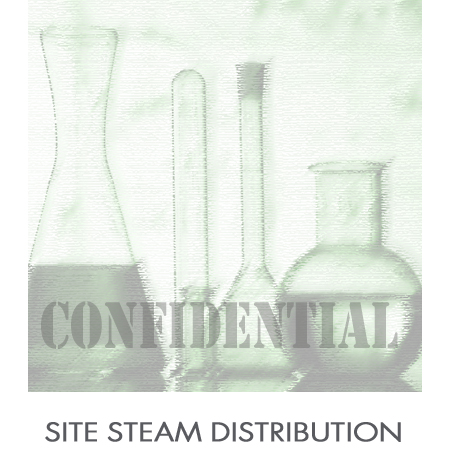 Site_Steam_Distribution.jpg