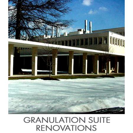 Granulation_Suite.jpg
