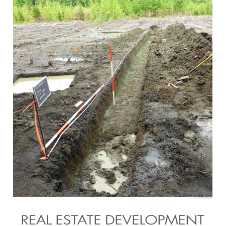 Real_Estate_Development.jpg