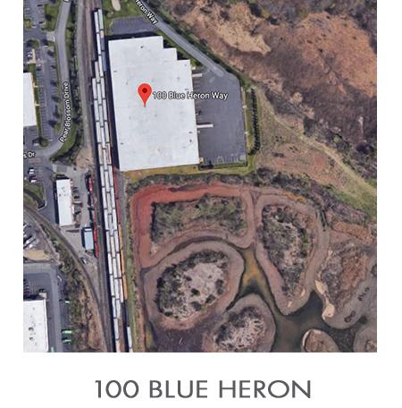 100 Blue Heron.jpg