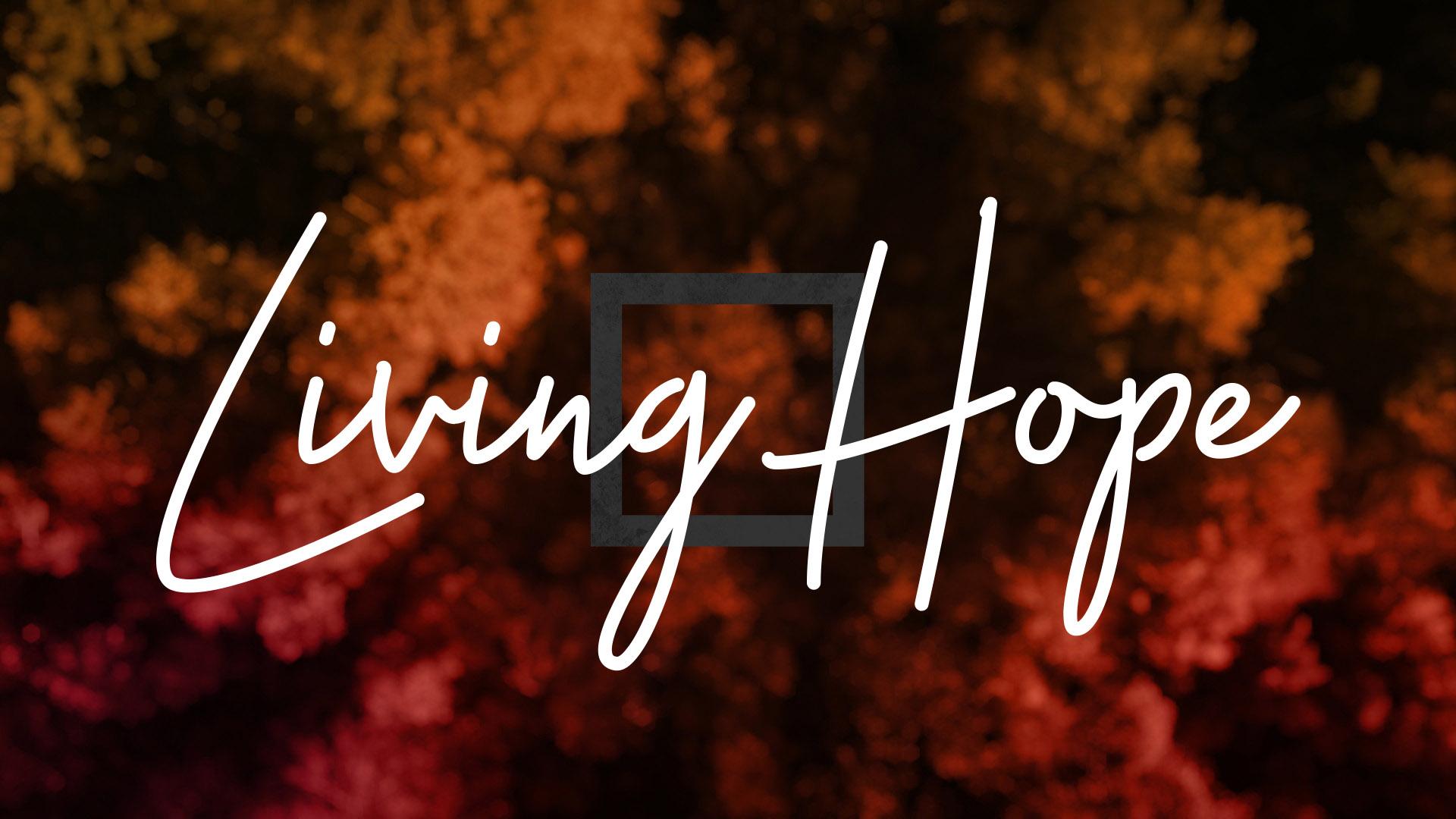 Living Hope Series.jpg