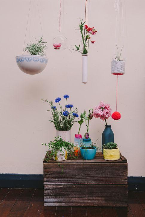 Start A Whimsical Indoor Garden