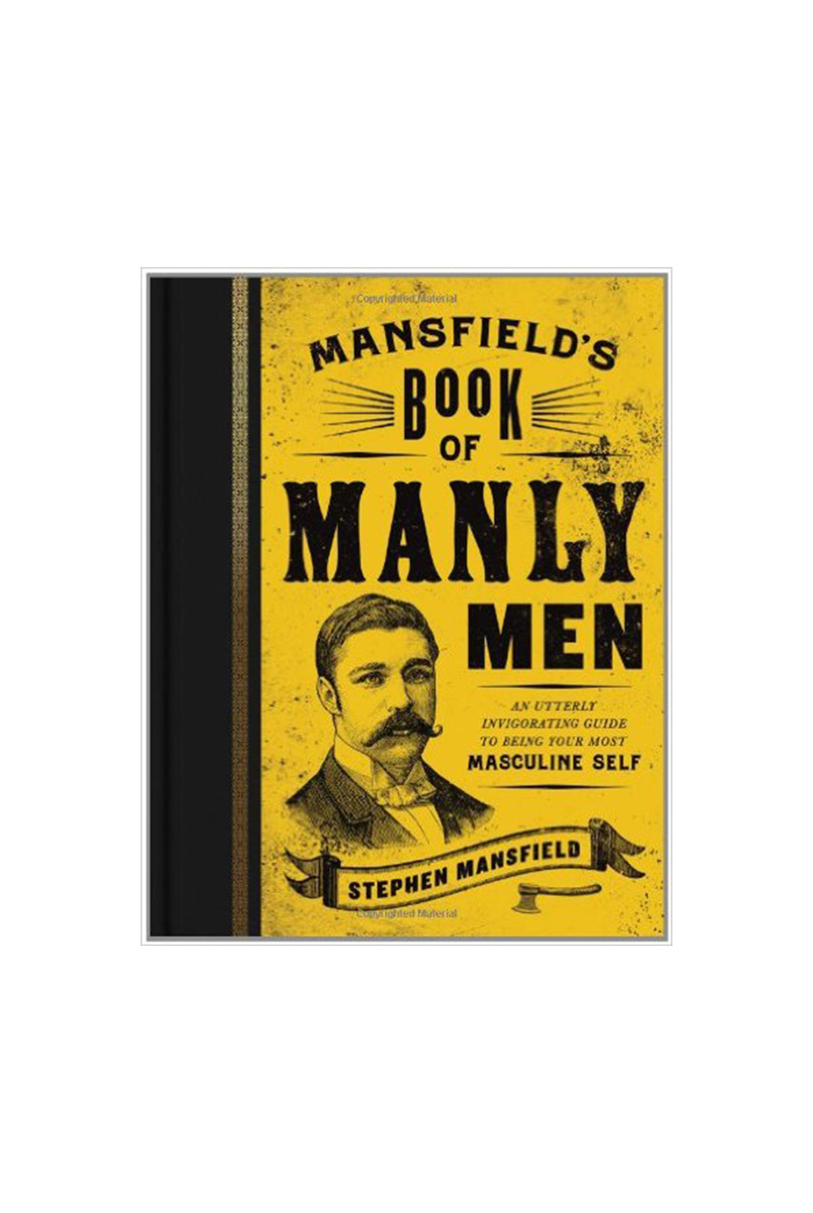 Mansfield's-Book-of-Manly-Men.jpg