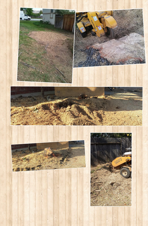 Collage 2014-12-02 22_20_52.jpg