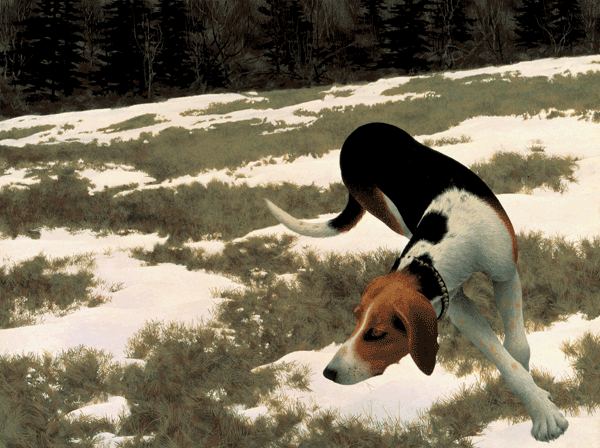 Hound in Field 1958  by  Alex Colville. Used with permission.  Copyright A.C. Fine Art Inc.