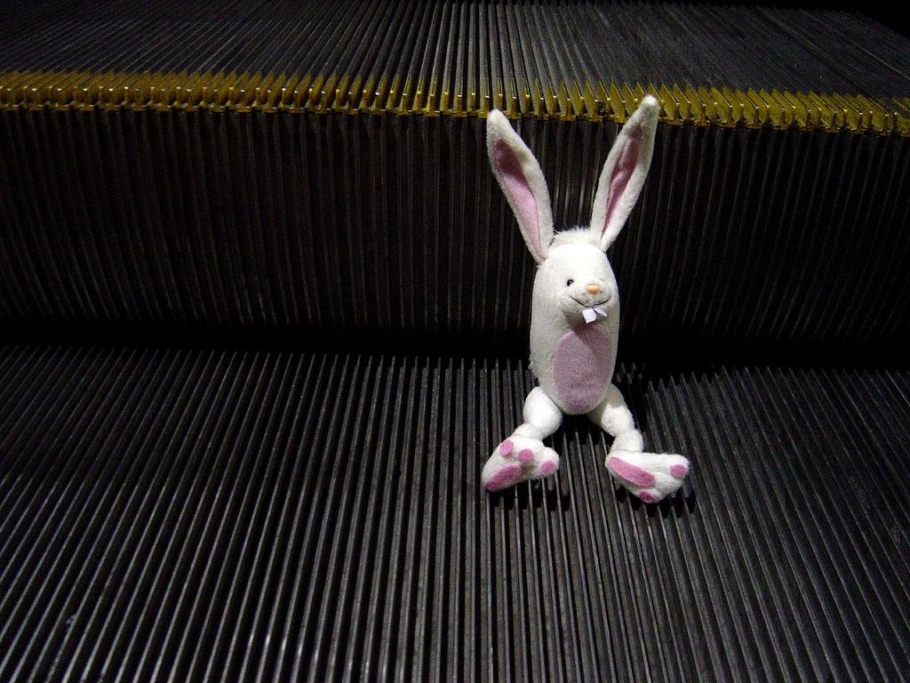 A bunny rides an escalator in the L.A. Metro. Photo Credit:  Stefan Andrej Shambora