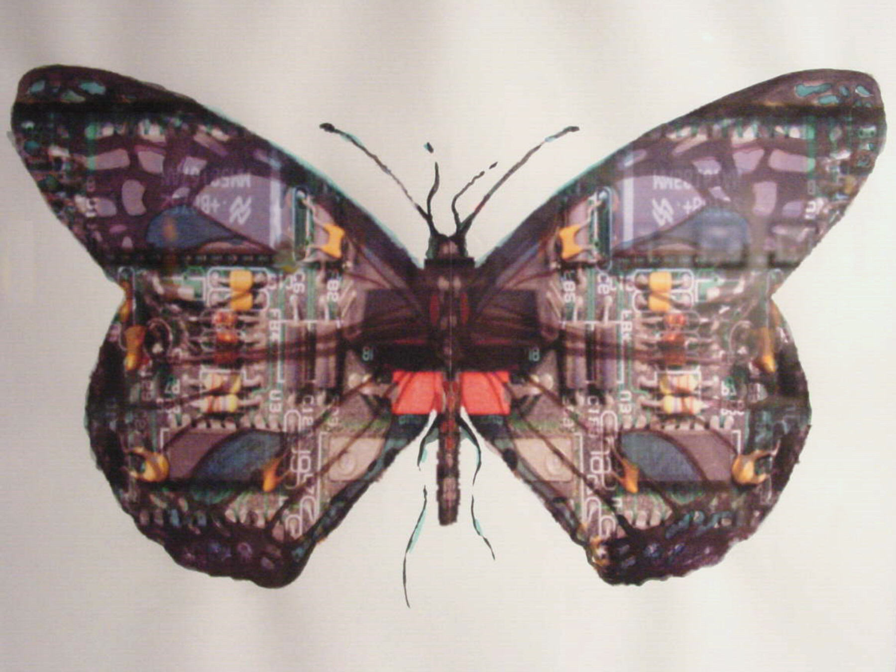 Circuit Board Butterfly   (2010). W atercolor and pastel on computer print by  Laura C. Hewitt .