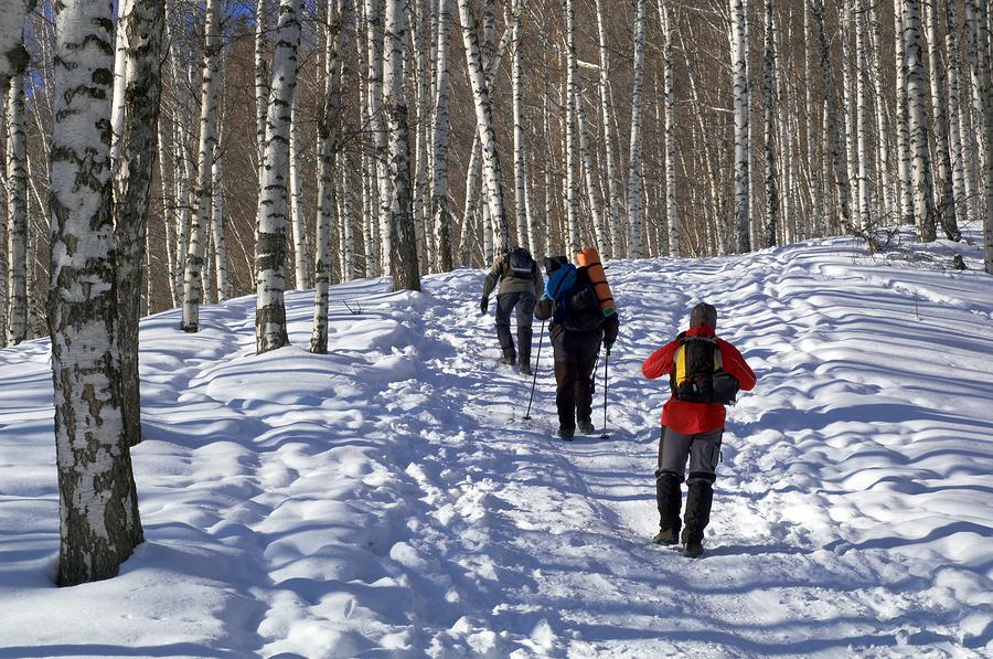 bigstock-Three-Man-Snowshoer-In-Winter--2586703.jpg