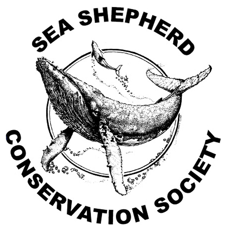 sea_shepherd_seas_ocean_atlantique_surf_parlementia_bateau_mer_greepeace_wwf_europe_ecologie_vert_bleu12.jpg