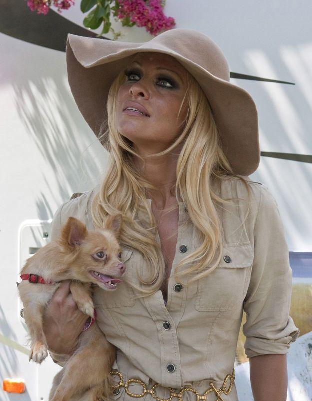 Exclu-Pamela-Anderson-lance-un-appel-Les-animaux-ne-sont-pas-des-cadeaux-pourquoi-je-n-offrirai-jamais-un-chiot-a-Noel.jpg