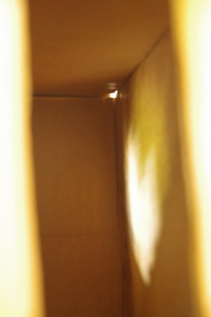 boxing shadows2